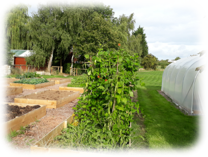 allotments 2018 web small rounded